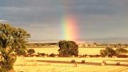 24th Aug 2014 - Grainy rainbow