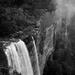 Fitzroy Falls by peterdegraaff