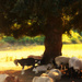 Sheep and goats by teiko