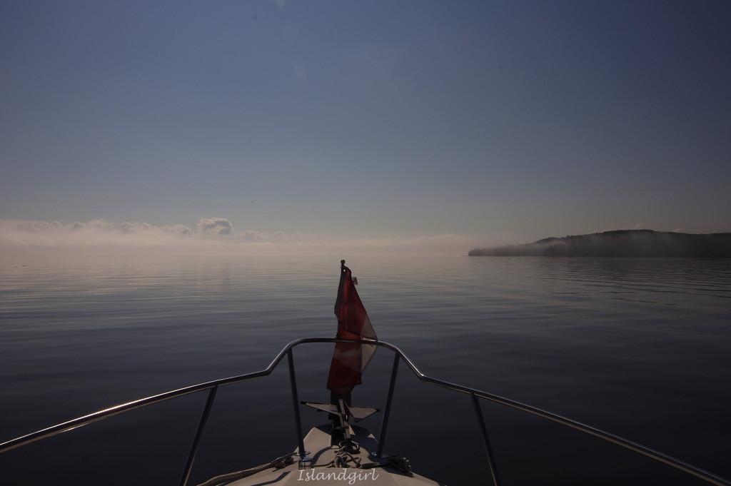 Foggy morning  by radiogirl