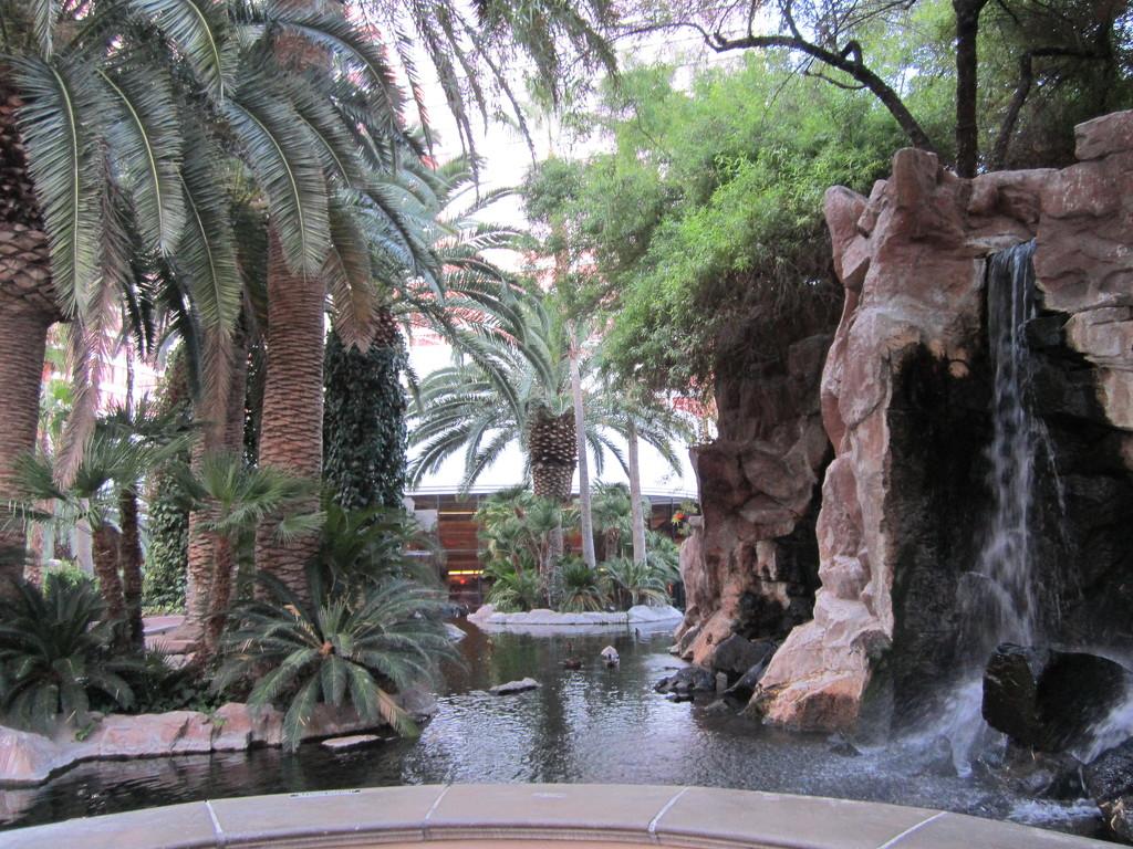 Habitat Pools by pamelaf