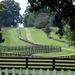 Road to Appomattox  by khawbecker