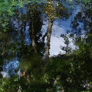 2nd Sep 2014 - Reflection