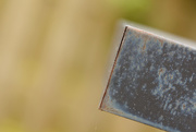 2nd Sep 2014 - Abstract in the Garden