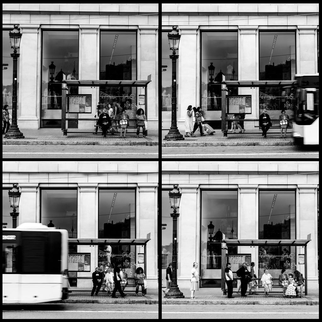 Parada de Autobús / Bus Stop by jborrases