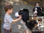 "3rd Sep 2014 - ""I *LOVE* Dogs!"", he proclaimed..."