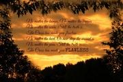 7th Sep 2014 - FLAWLESS