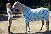 2nd Sep 2014 - The Royal Horse
