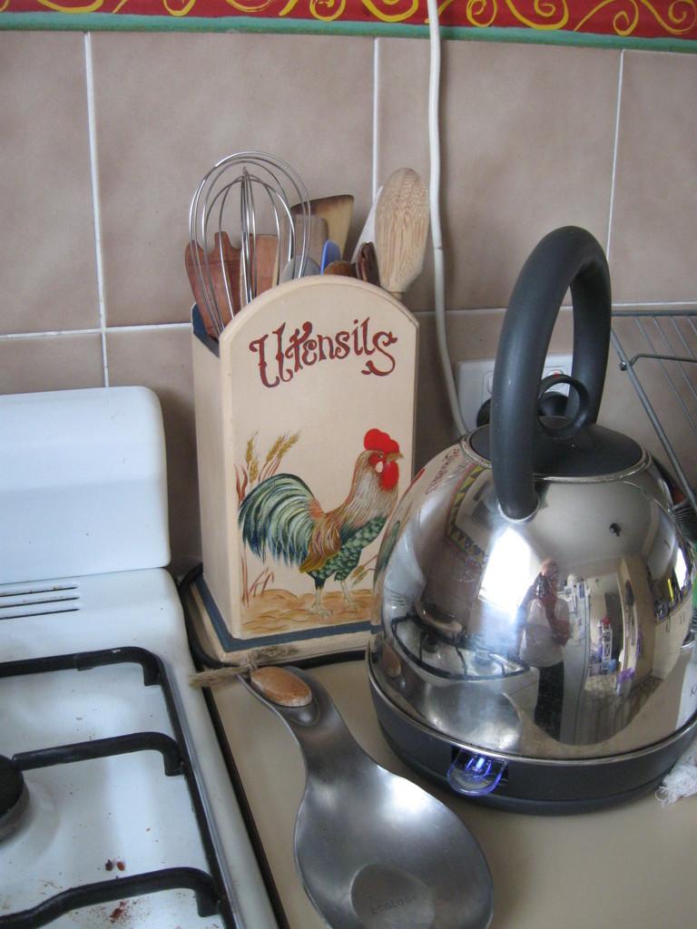 A Chicken In the Kitchen! by mozette