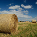 Hay bales by richardcreese