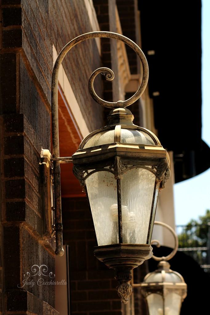 Lovely Light by judyc57