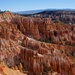 Hoodoos in the Canyon