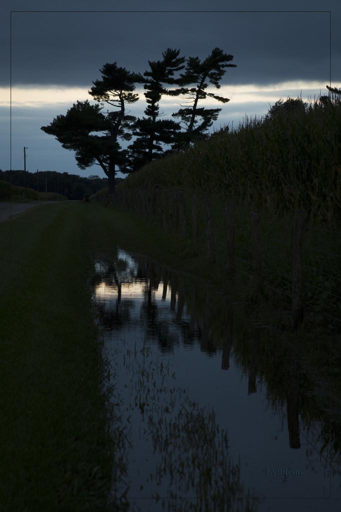 Roadside Reflection by lyndemc