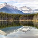 Reflections..... by shepherdmanswife