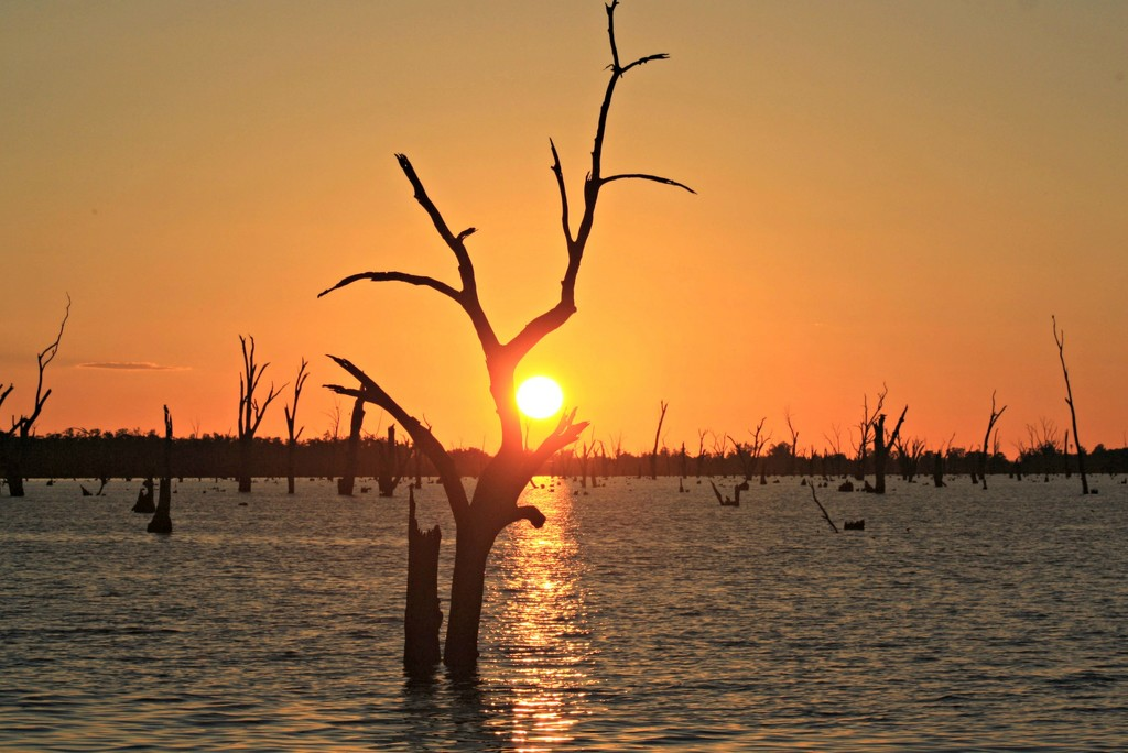 Sunrise at Lake Mulwala by leestevo