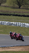 16th Sep 2014 - Racing country style