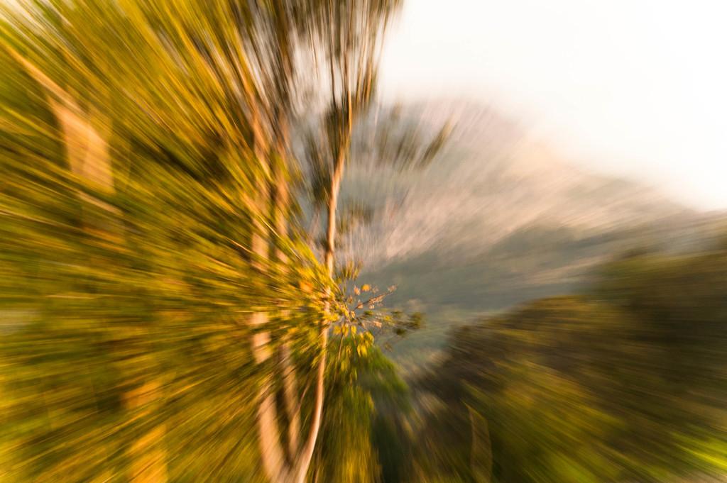Zoom burst by overalvandaan