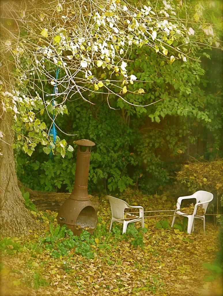 Leafy Corner by helenmoss