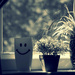 Smiley cup on the window sill