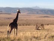 28th Sep 2014 - Viewing Mt Kenya