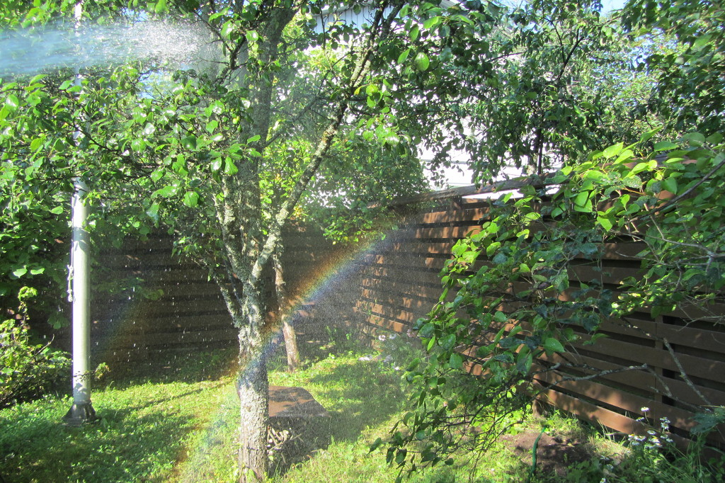 Self-made rainbows IMG_4593 by annelis