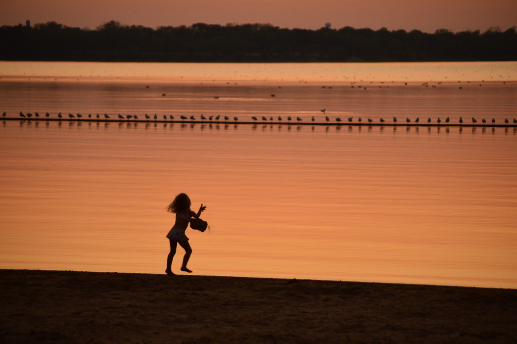 Little Girl, Big Rock, Lotta Birds by kareenking