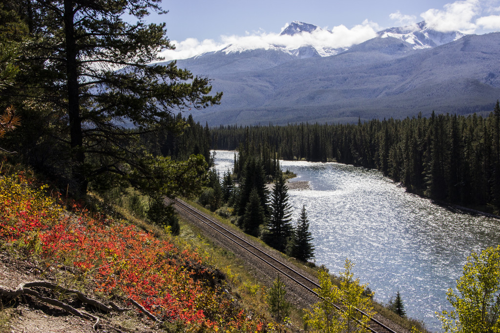 Bow Valley Parkway by shepherdman