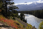 3rd Oct 2014 - Bow Valley Parkway