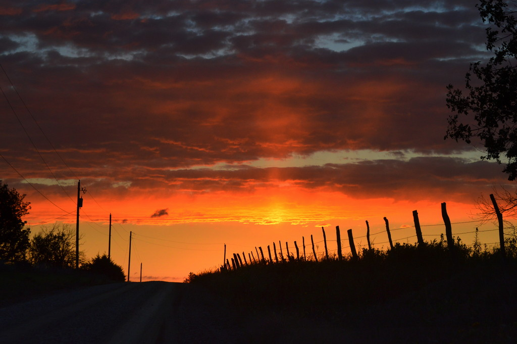 Sun Pillar and Fence Line by kareenking