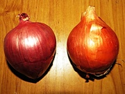 4th Oct 2014 - O is for...onions