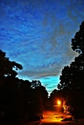4th Oct 2014 - Blue Hour