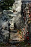 4th Oct 2014 - Steps