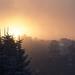 Friendly neighbourhood sunrise