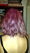 6th Oct 2014 - Violet's hair