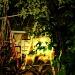"""Night Swing"" by iamdencio"