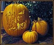 21st Oct 2010 - Pumpkin family