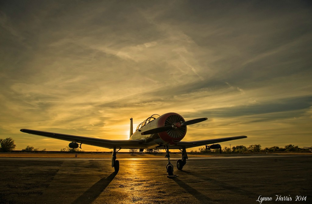 Sunset at Hicks Airfield by lynne5477