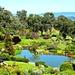 Cowra Japanese Garden by leestevo