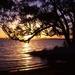 Golden lake by peterdegraaff