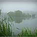 Misty Morning On The Lake by carolmw