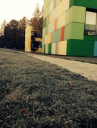 8th Oct 2014 - First Frost