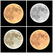 11th Oct 2014 - Harvest Moon Collage