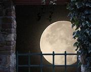 10th Oct 2014 - Hello moon