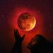 Blood Moon by gavincci