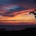 Amazing Skies by selkie