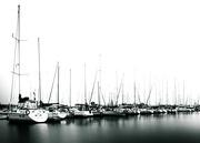 14th Oct 2014 - at the marina