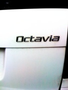 15th Oct 2014 - O is for...octavia