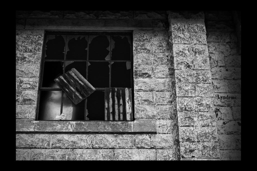 The Window by lyndemc