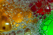 13th Oct 2014 - (Day 242) - Web of Bubbles