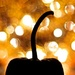 Pumpkin bokeh by kwind